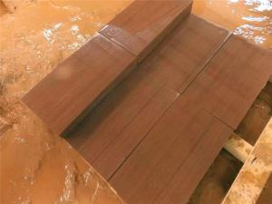 Purple wood Sandstone